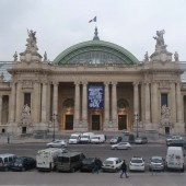 Medaille de bronze salon des Artistes français Grand Palais 2010